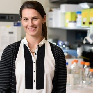 Erin Lashnits, MS, DVM, PhD, DACVIM (SAIM)