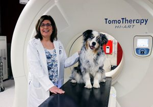 Successful clinical trials in dogs with nasal tumors at UW Veterinary Care, shepherded by Professor Lisa Forrest, led to widespread use of TomoTherapy in human medicine