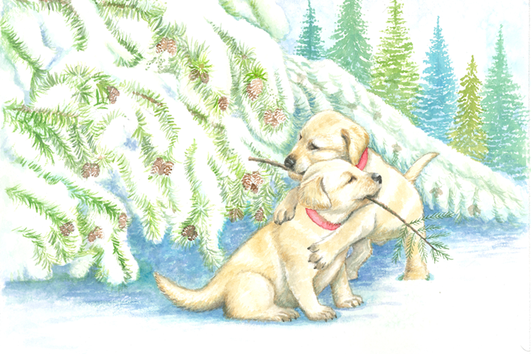 two puppies in snow