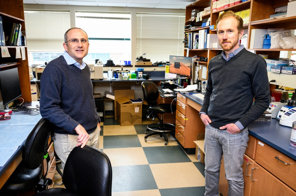 Mainstaiing a bit social distance due to COVID-19, researchers David O'Connor, left, and Tom Friedrich are pictured in a lab at the AIDS Vaccine Research Laboratory (AVRL) at the University of Wisconsin-Madison on March 18, 2020. O'Connor is UW Medical Foundation Professor of Pathology and Laboratory Medicine in the School of Medicine and Public Health. Friedrich is professor of pathobiological sciences in the School of Veterinary Medicine. Both are experts on the evolution and emergence of HIV (AIDS), SARS-CoV-2 (COVID-19), influenza, Zika and other viruses. (Photo by Jeff Miller / UW-Madison)