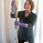 Woman holding horse leg bone