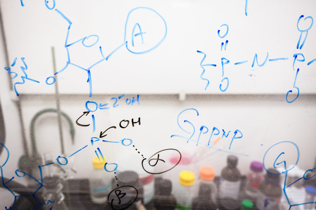 Chemical equations and notations are written on a fume hood's glass surface