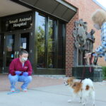 canine patient arrives for appointment at UW Veterinary Care